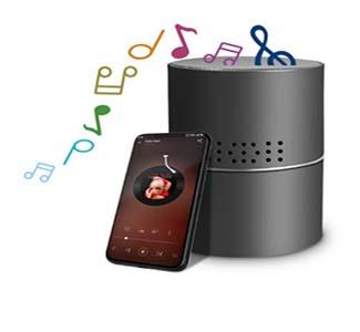Speaker Bluetooth WIFI